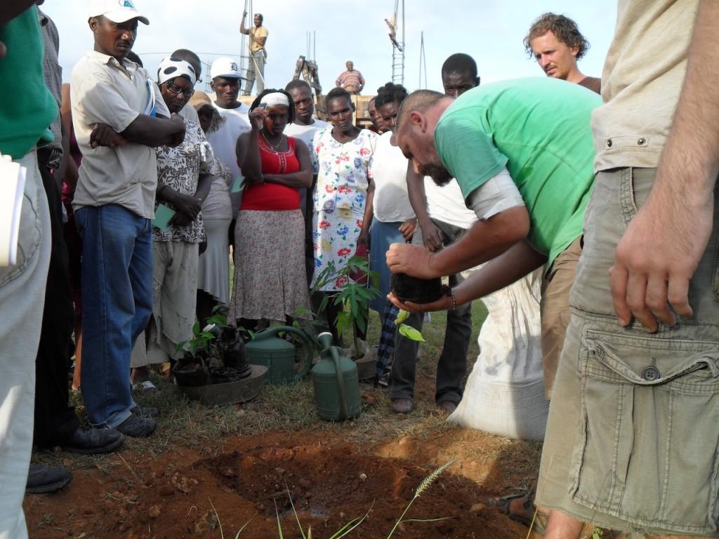Aviram planting tree Haiti