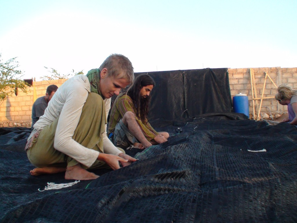 Building nursery shade net (2)