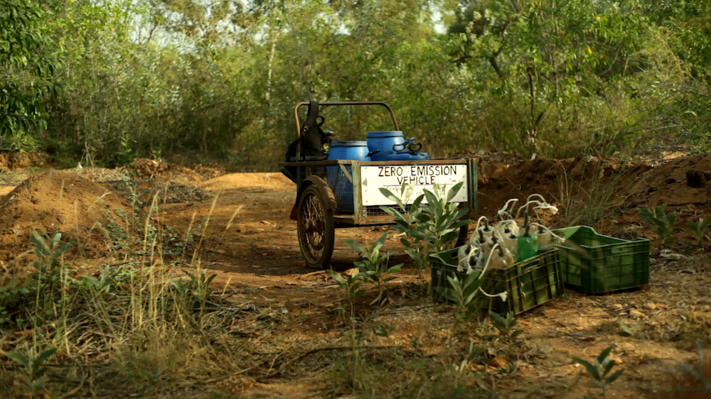 Cargo tricycle in the forest