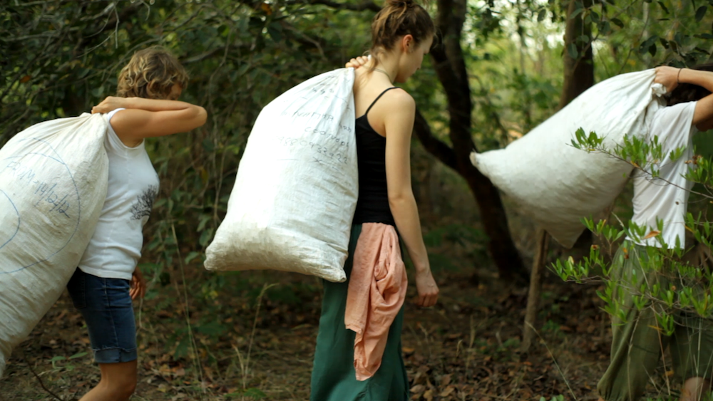 Carrying mulch for the trees (2)
