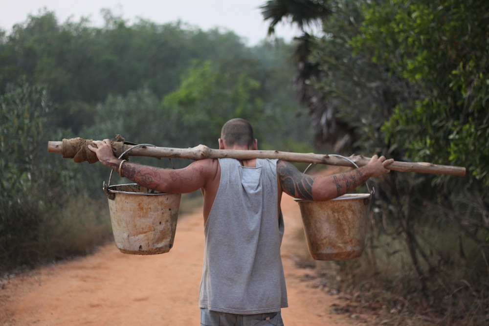 Carrying water for the trees