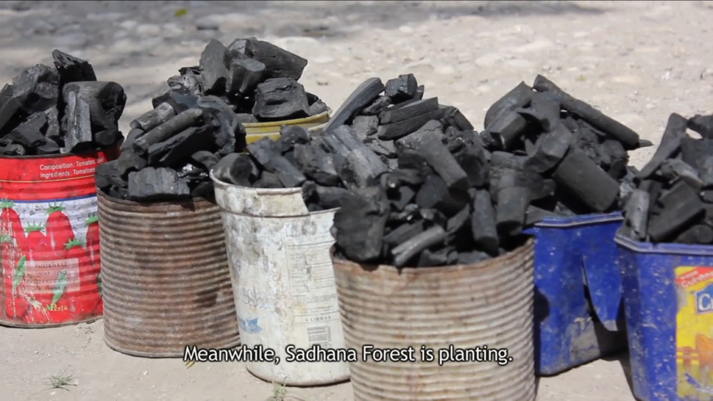 Charcoal sold in Anse a Pitre