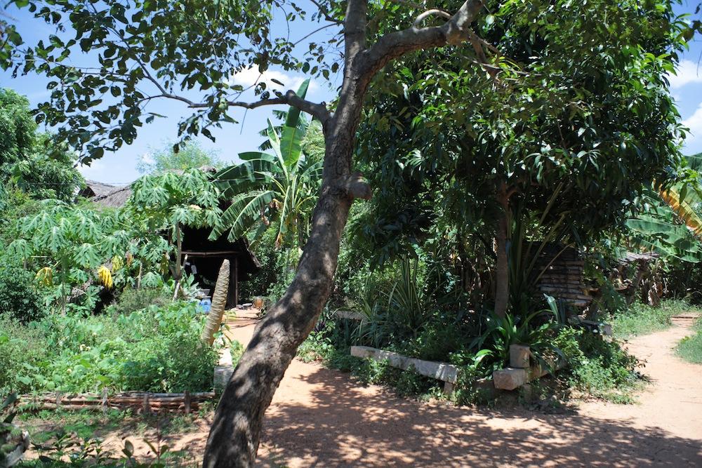 Garden1 2013