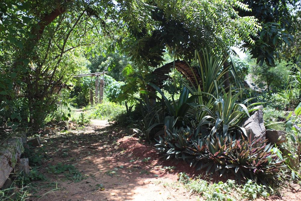 Garden5 2013