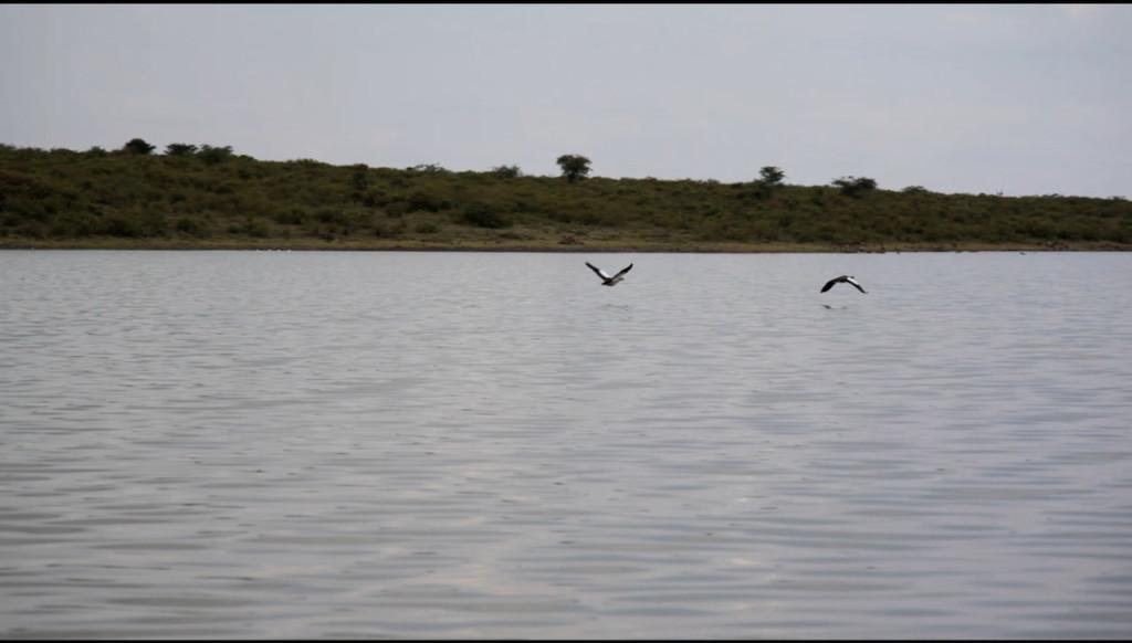 Kisima lake