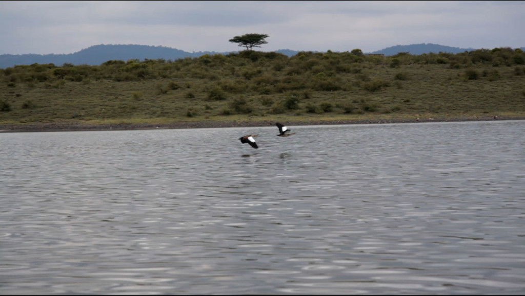 Kisima lake - Close to Sadhana Forest Kenya