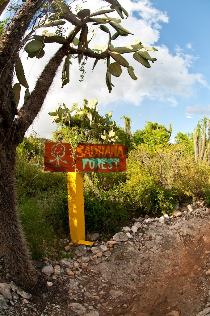 Sadhana Forest Haiti entrance
