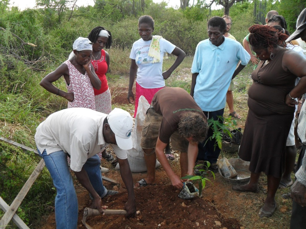 Tree planting training