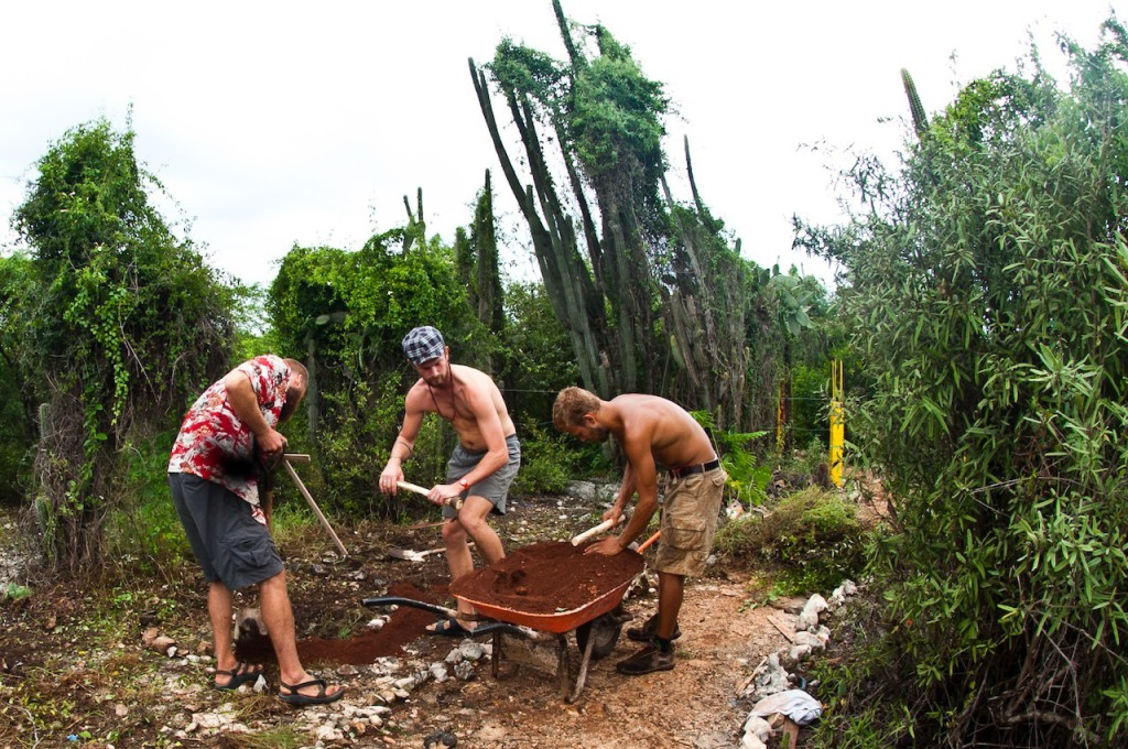 Volunteers creating permaculture sponge