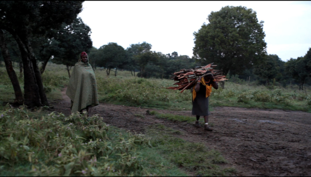 Woman coming back from the forest with firewood