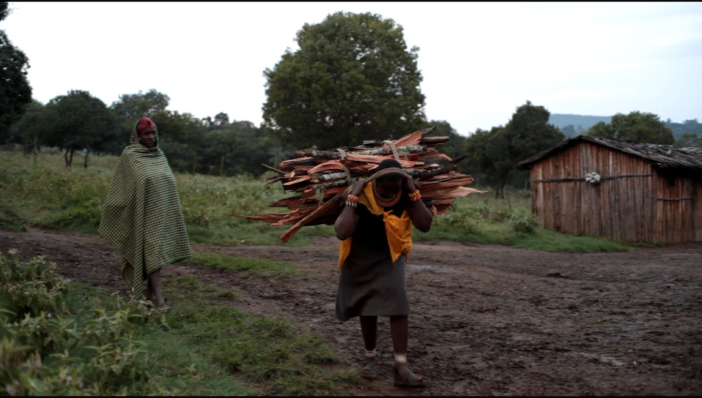 Woman coming back from the forest with firewood - more wood is taken then can be naturally replenished